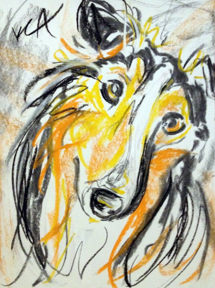 Pastel drawing of a sheltie
