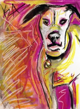 Pit bull, abstract, pastel, dog, drawing, art