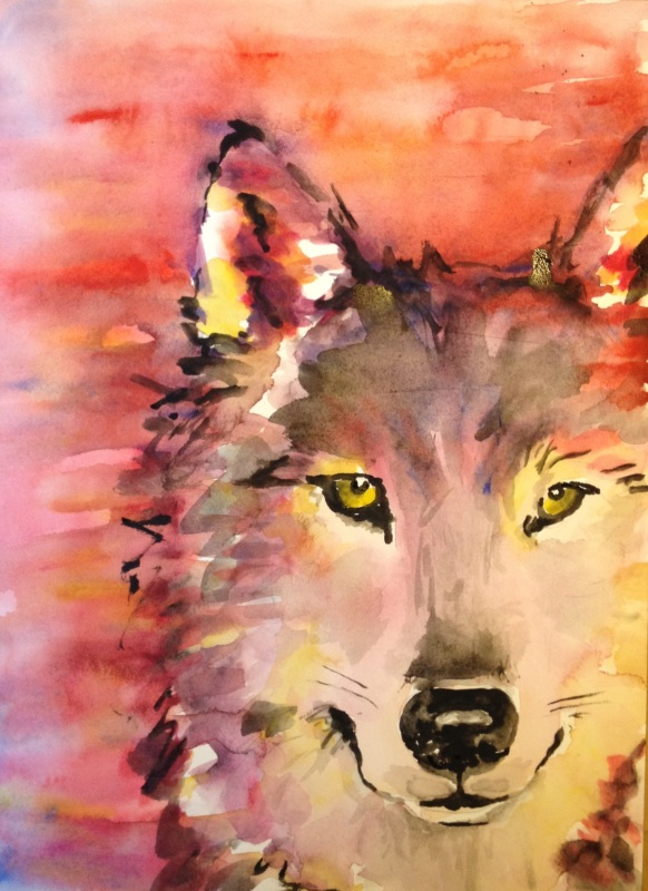 """""""Fire Wolf"""" watercolor on paper, 9"""" x 12"""", 2013"""