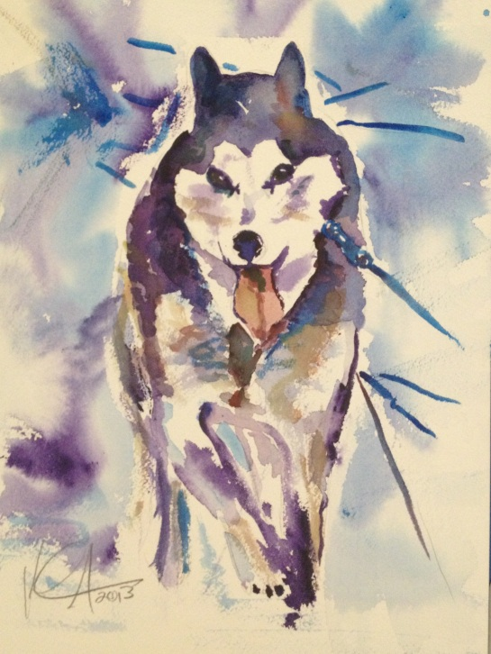 Another Watercolor of a Sled Dog
