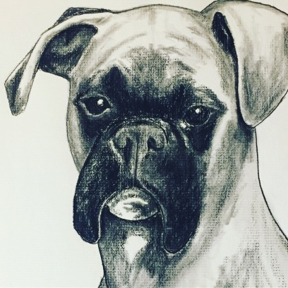 """The Boxer"" Charcoal on paper, 9"" x 12"", SOLD"